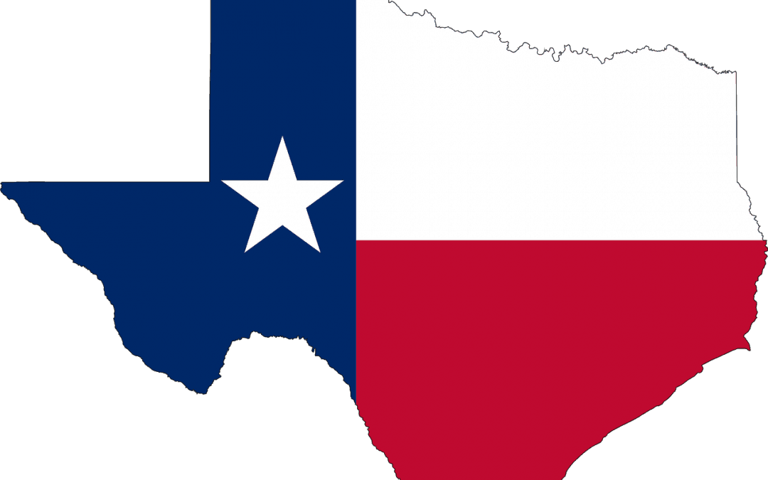 Dallas SEO Consultants- Help With Local Dallas Search Engine Optimization